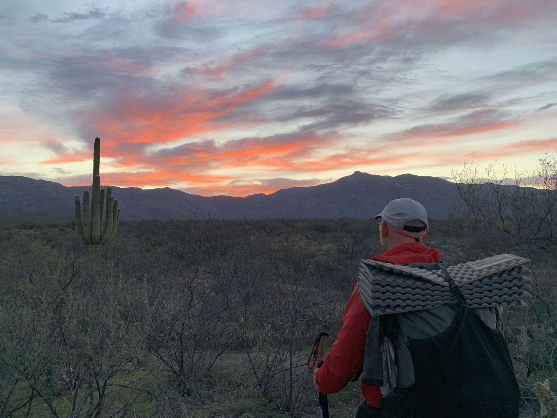 A stunning sunset on the Arizona Trail, with a saguaro cactus.