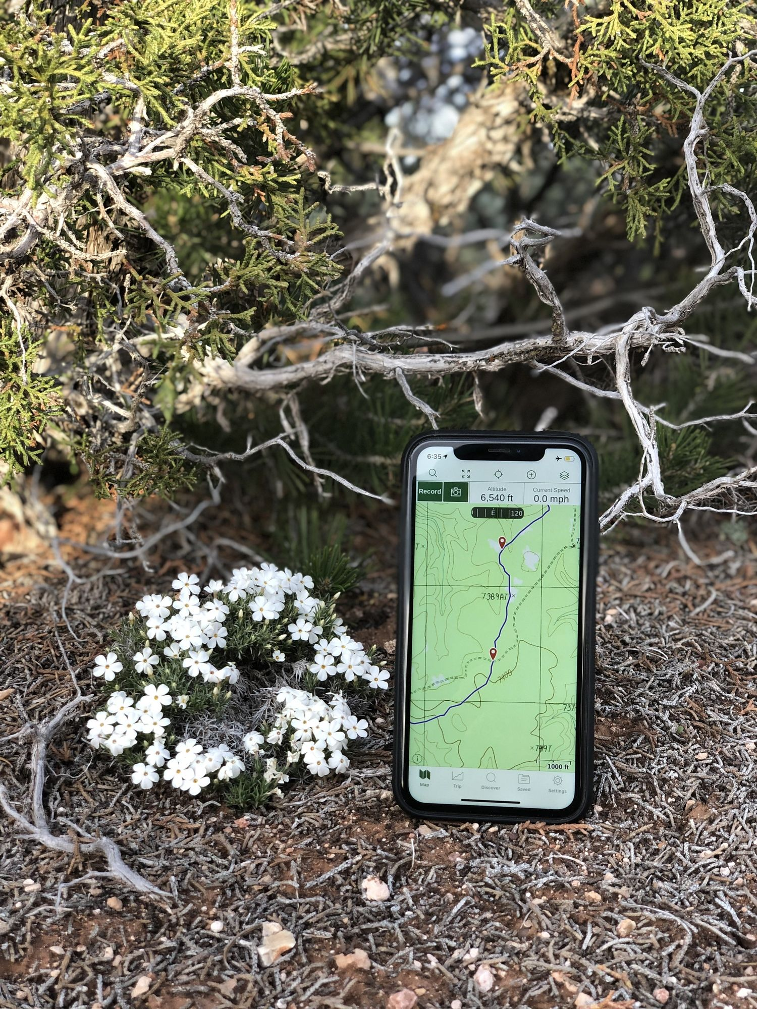 The iPhone has quickly become a useful gear item that most long distance hikers bring for taking photos, journaling, entertainment, and navigating on their adventures. Here it is shown with the Gaia GPS app.   Photo courtesy Naomi Hudetz