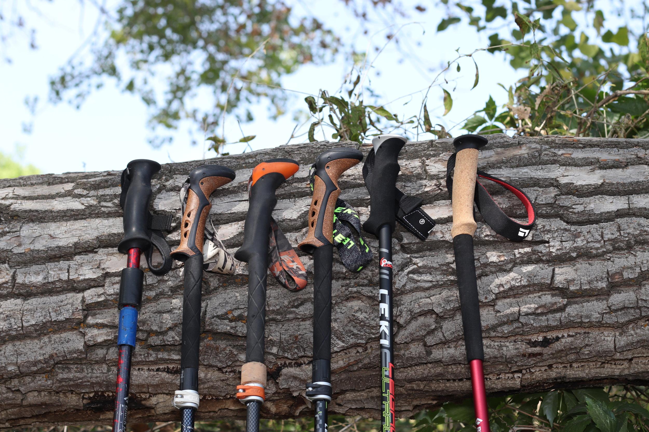 All trekking poles.