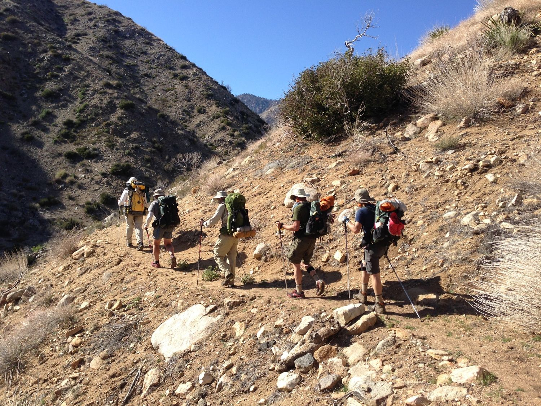 Group of hikers using trekking poles.