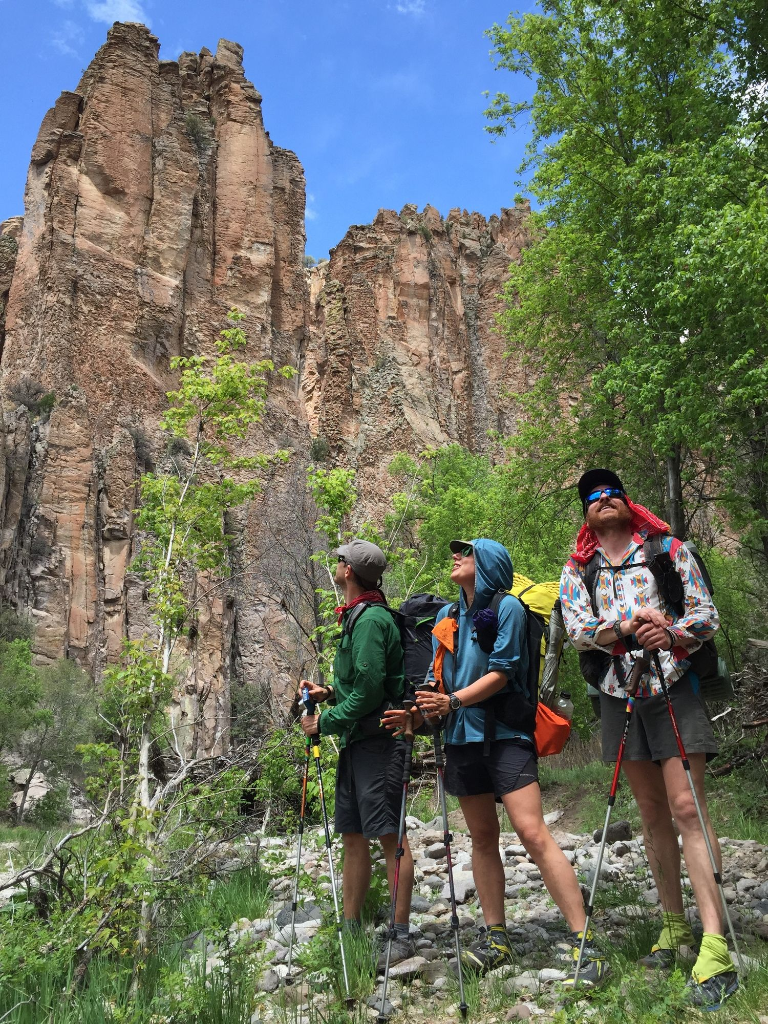 A group of hikers all using trekking poles in a canyon.