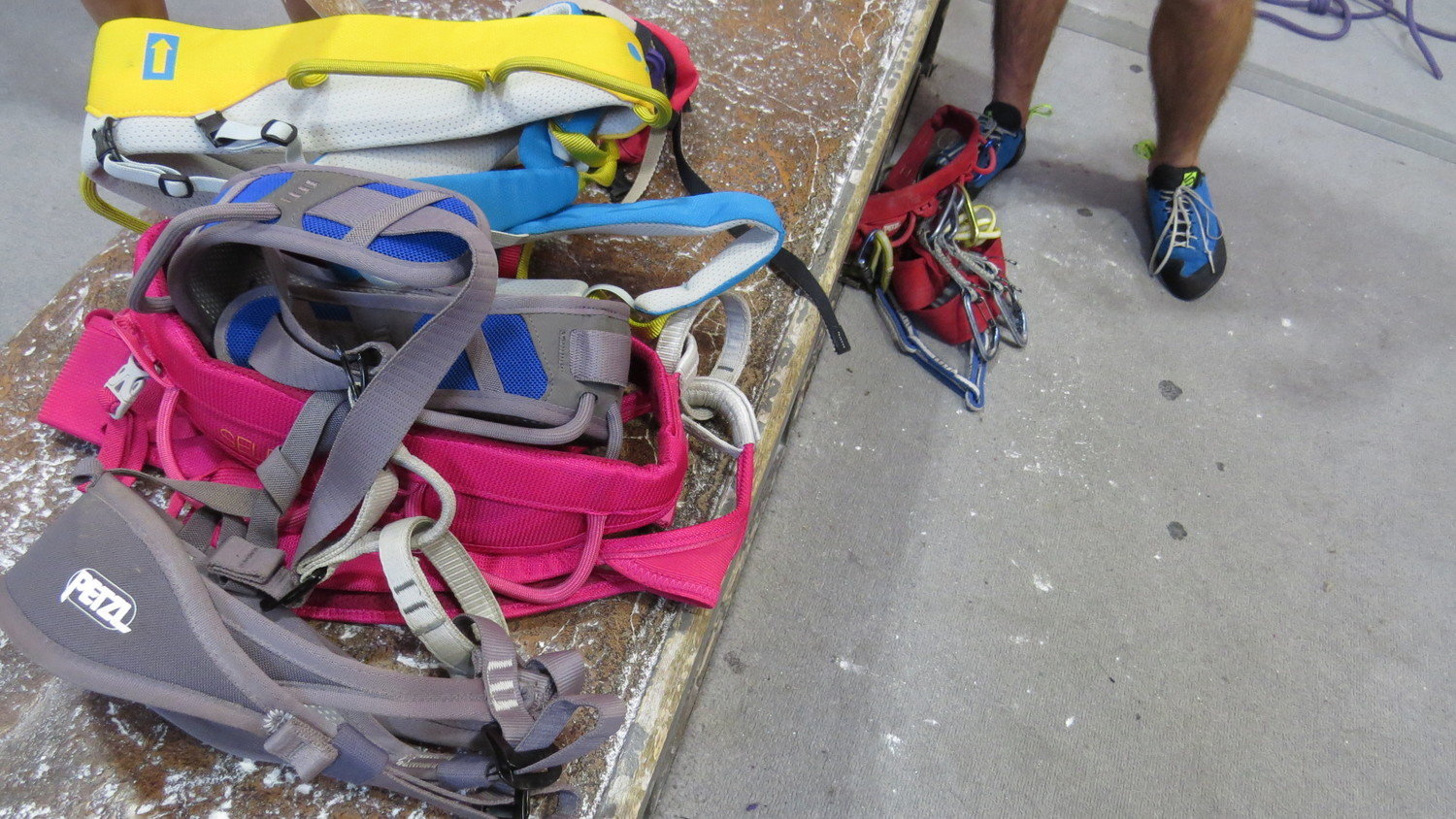 The number of climbing harnesses available can be overwhelming.   Photo by Liz Thomas