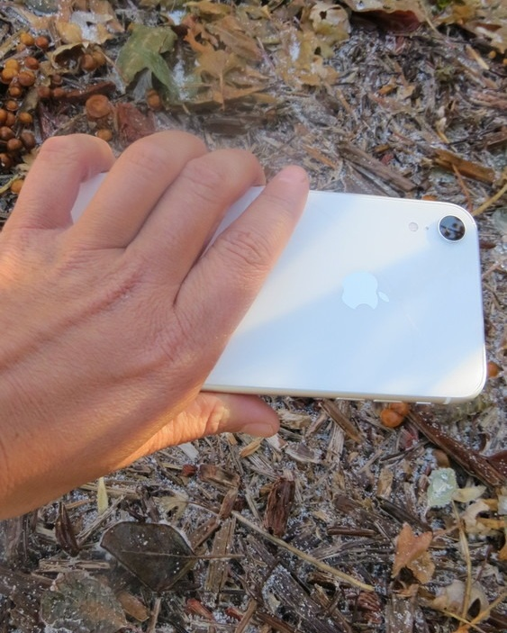 The iPhone XR being held by an outdoors person, not a hand model.