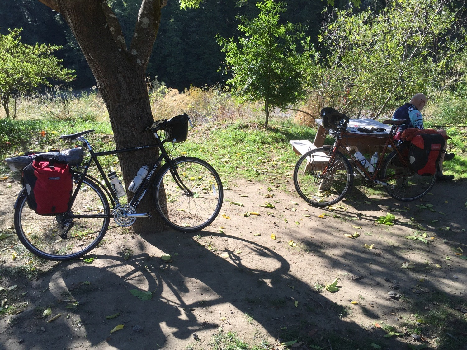 The Surly Long Haul Trucker and the Trek 520 at a campground on the Pacific Coast Route.