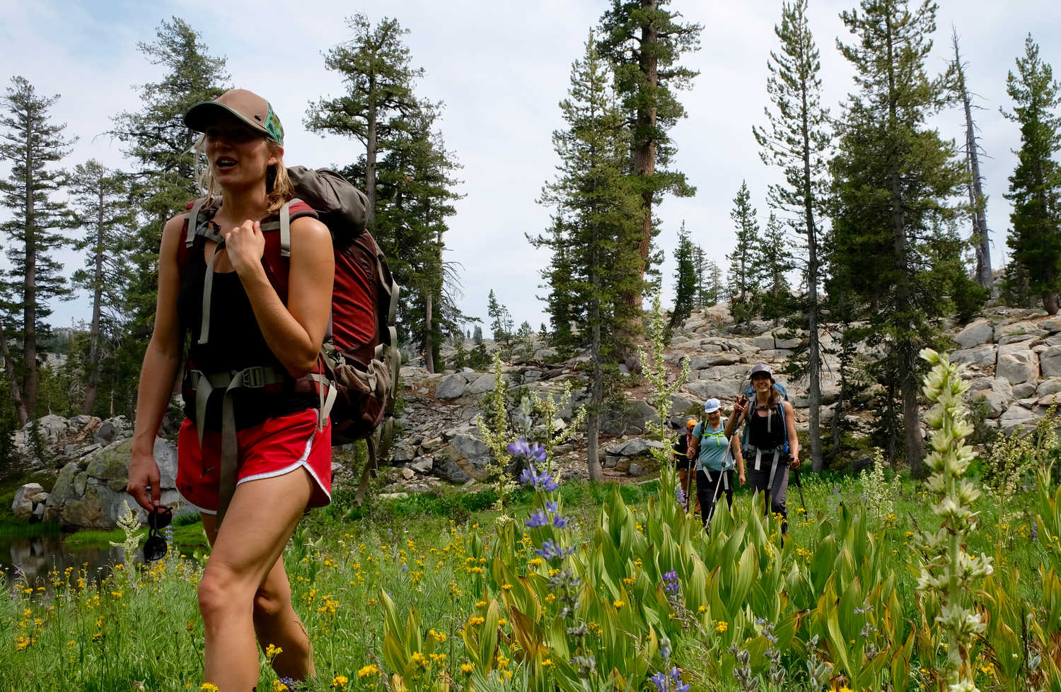 Hiking in the Sierra during wildflower season can be a magical experience.   Photo by Duncan Cheung.