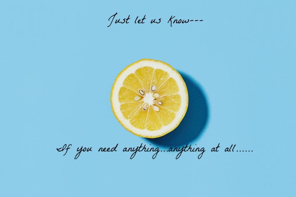 lemon-on-blue+(1) (2).jpg
