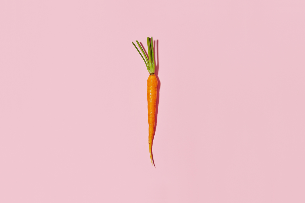 carrot-on-pink (1).jpg