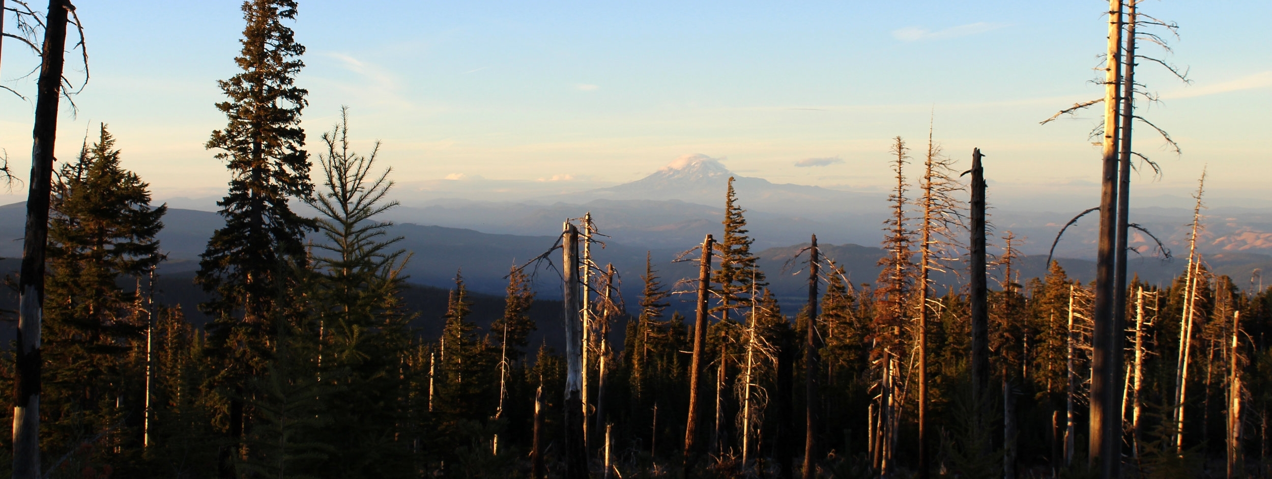 Mount Hood sunset.jpg