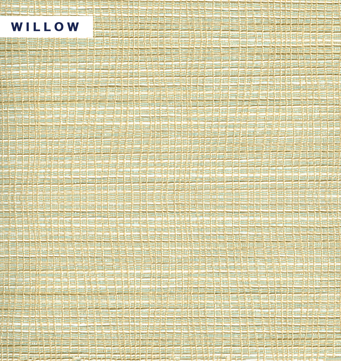 Seychelles - Willow.jpg