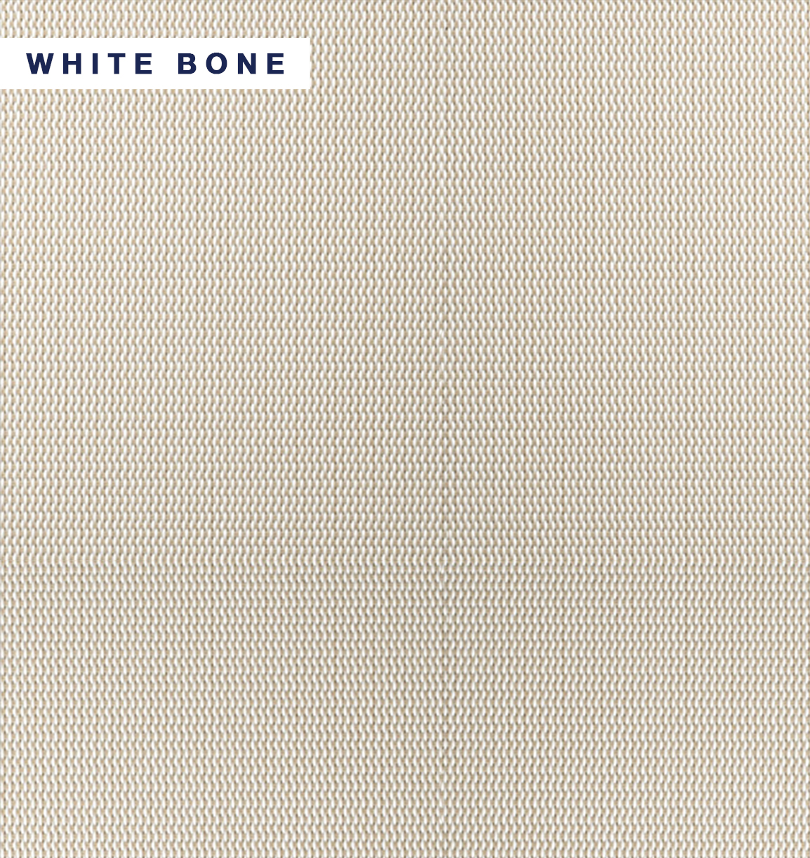 Vivid Shade - White Bone.jpg