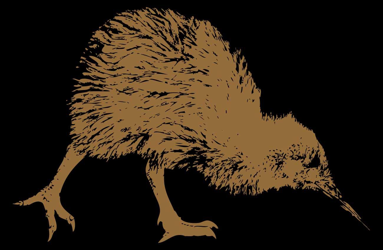 bifem-2019-Reo-Hou-Future-Voices-NZ.jpg