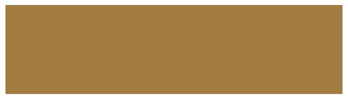 bifem-2019-sponsors-city-of-greater-bendigo.png