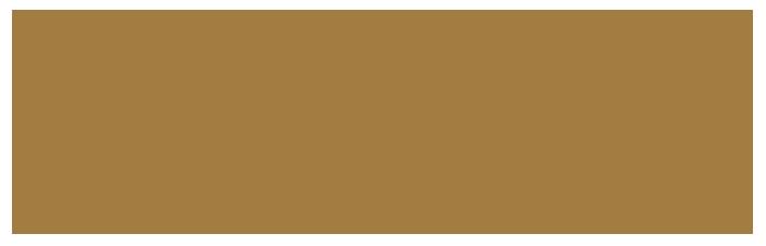 bifem-2019-sponsors-creative-victoria.png