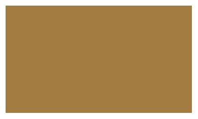 bifem-2019-sponsors-robert-salzer-foundation.png