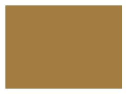 bifem-2019-sponsors-tough-cookie-marketing.png