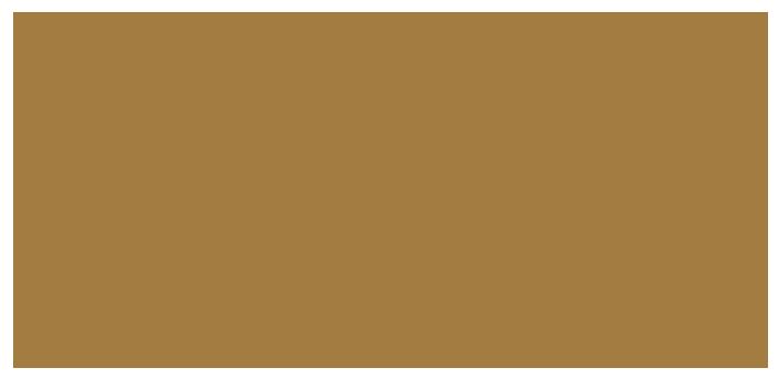 bifem-2019-sponsors-universidad-austral-de-chile.png