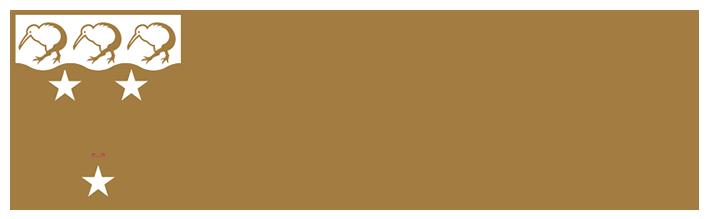 bifem-2019-sponsors-university-of-auckland.png
