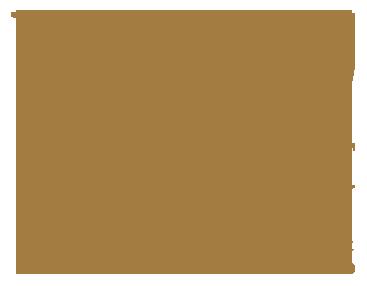 bifem-2019-sponsors-university-of-canterbury.png