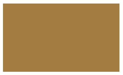 bifem-2019-sponsors-university-of-london.png