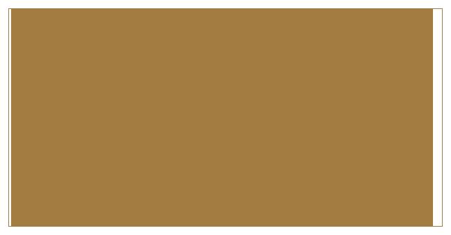 bifem-2019-sponsors-university-of-otago.png