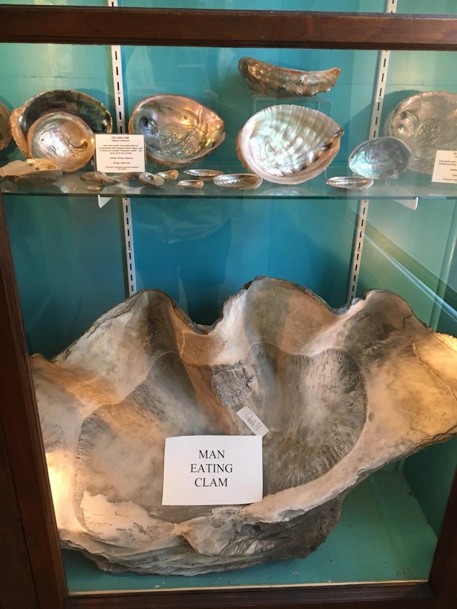woodman-museum-man-eating-clam.jpg