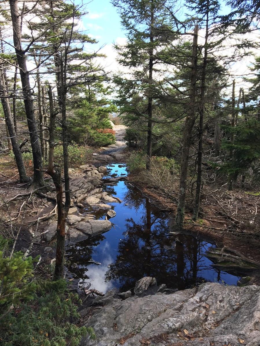 mount-monadnock-pond.JPG