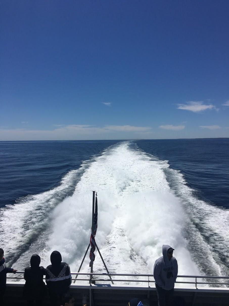 Big wake behind the whale watch boat