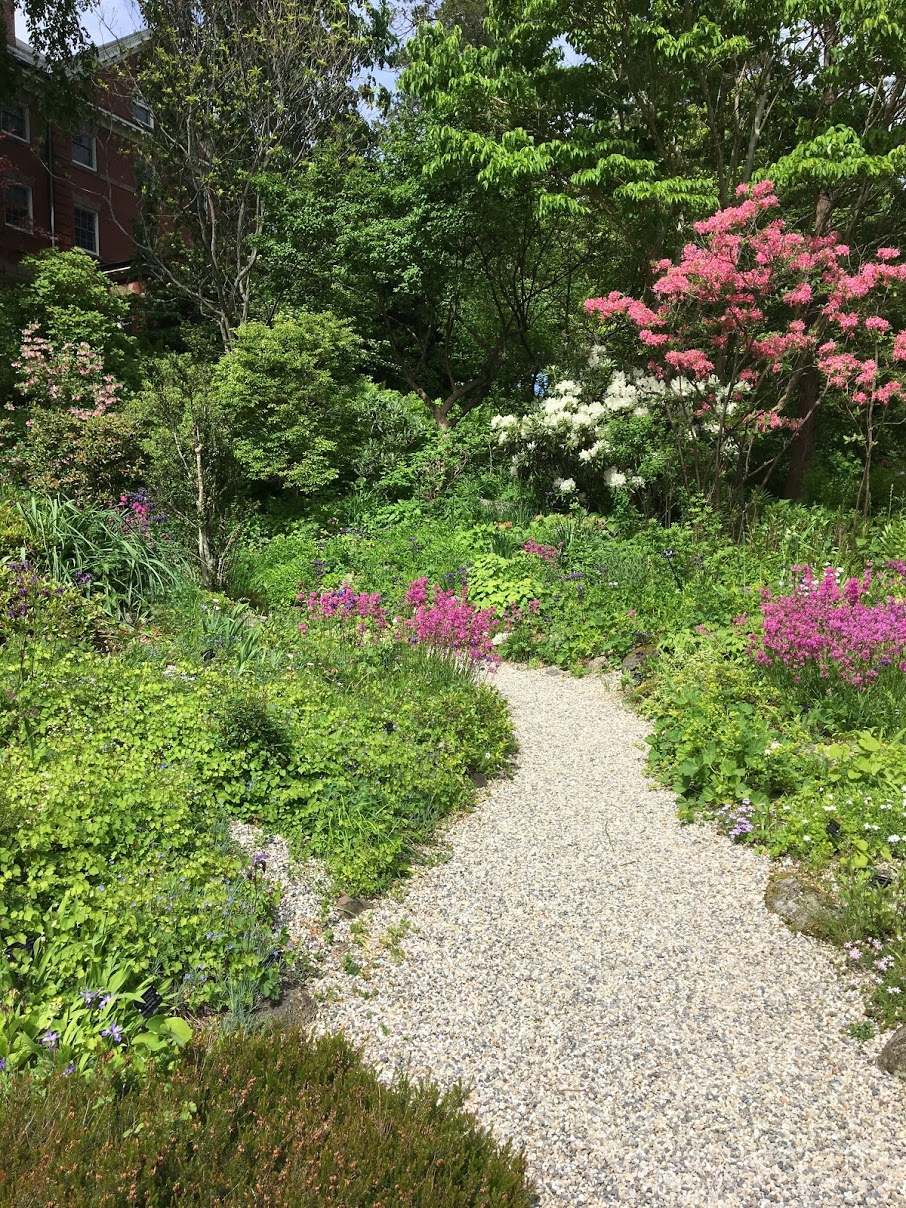 smith-college-botanic-garden-outside.JPG