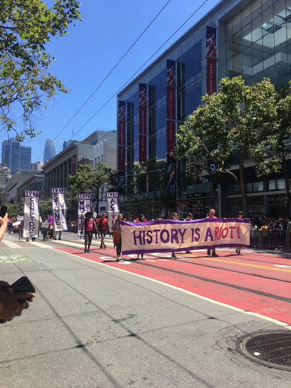 """Pride banner: """"History is a Riot!"""""""