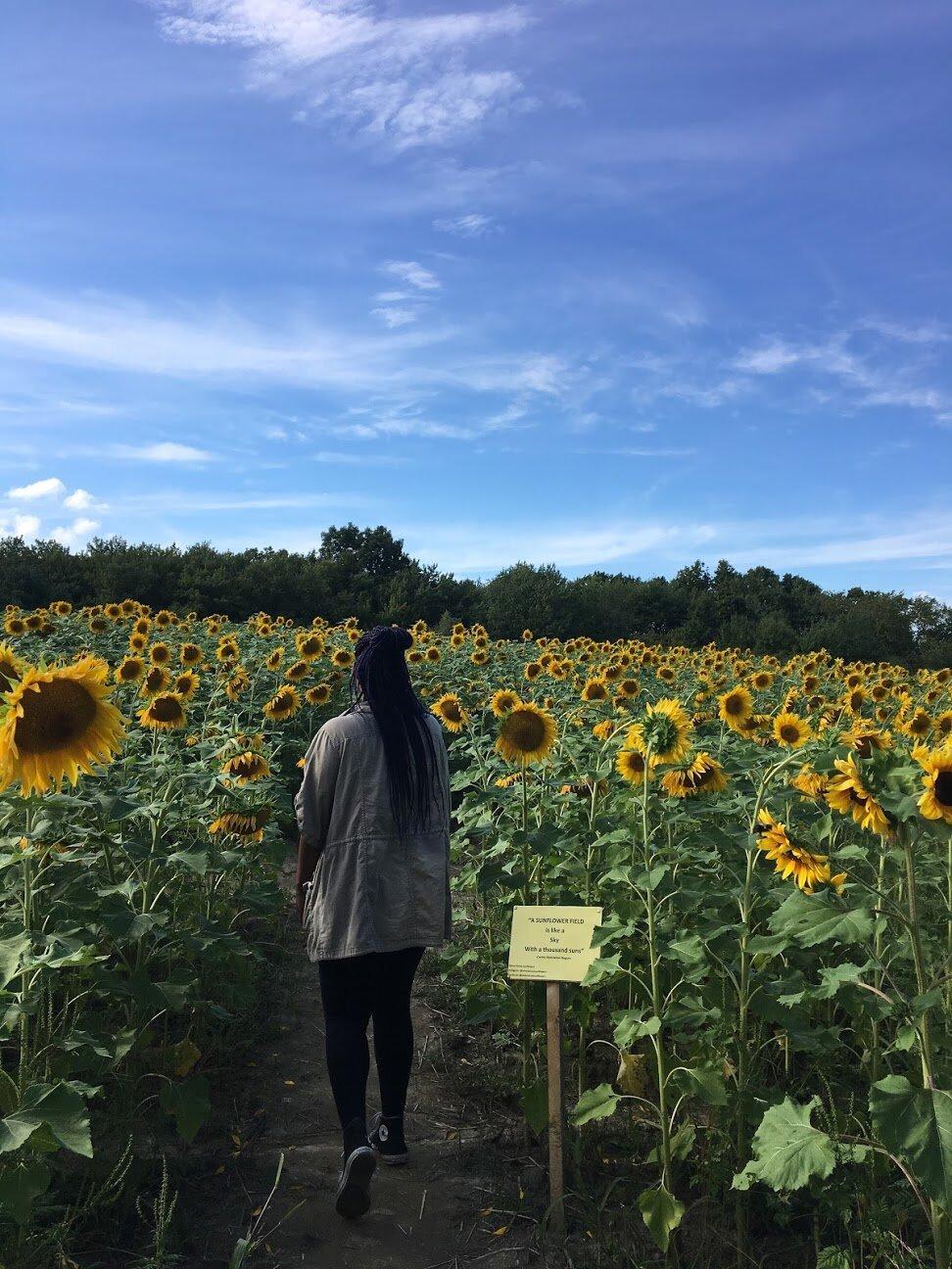 Aisha in the sunflower field