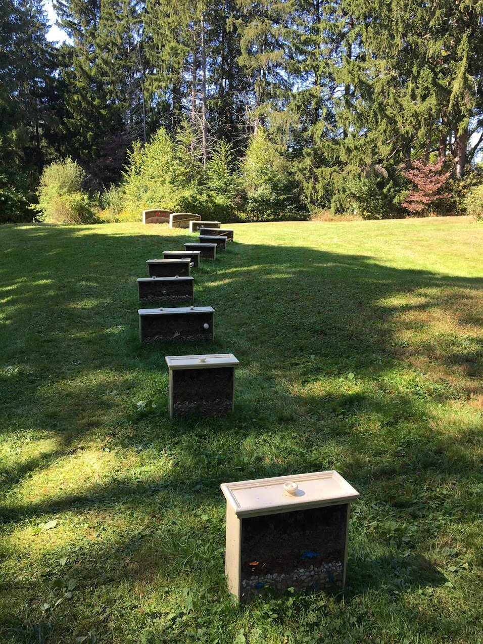 maudslay-state-park-sculpture-drawers.JPG