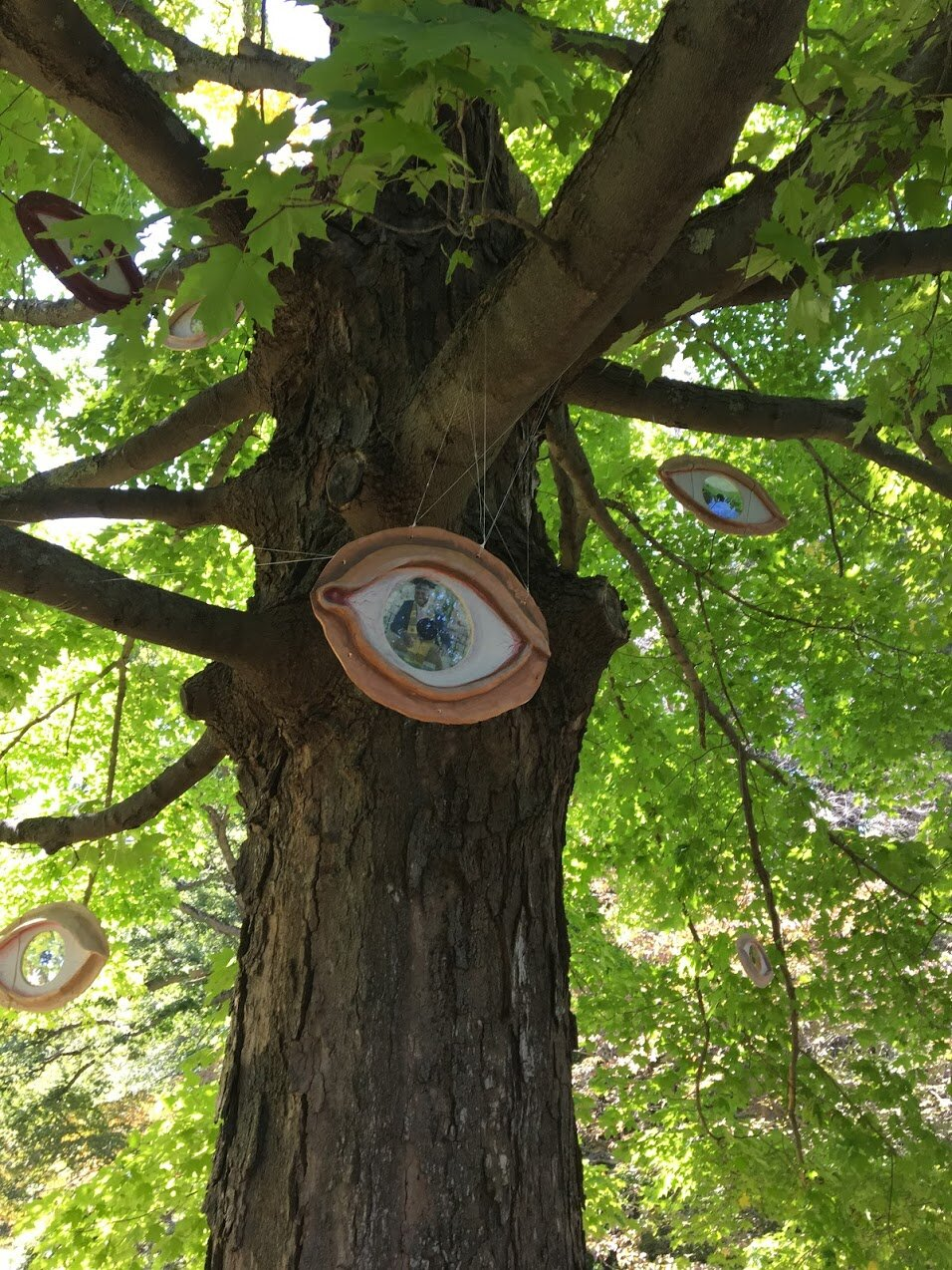 maudslay-state-park-sculpture-eyes-in-trees.JPG