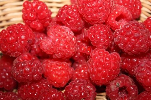 Greenstone Raspberries 2.jpg