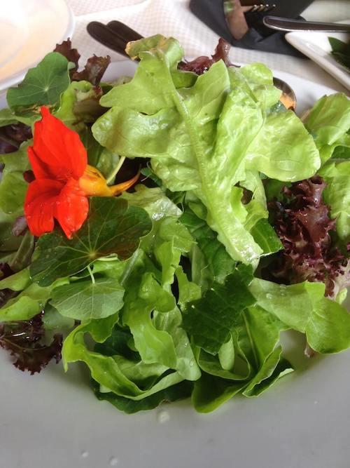 salad leaves dressed with lemon.jpg