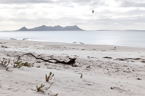 Fig 6 Babel and Cat Islands opposite the Ramsar sites of Flinders Island