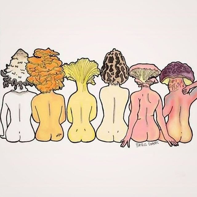 Why hello, ladies 😍⠀ ⠀ Admiring this #mushroomart by @prairielaneartdesign 🍄🧡⠀ ⠀ #mushlove #botanicalart #mushroomnerd #mycolophile #fungi #naturalbeauty #art ⠀ #pinkfloyd #nakedladies #biodiversity #bods #healthylifestyle #setavida #mushroomlife