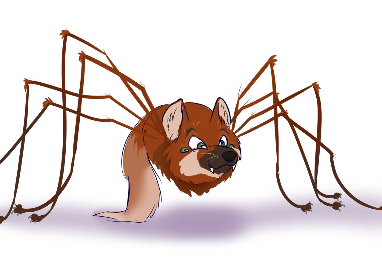 maned_wolf_spider2018.png