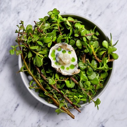 . . . . . . . . . . . . . . . . . . . . . . . . .  DRESSED OYSTER  Buttermilk . Citrus . Fennel  Freshly shucked West Coast oyster served with buttermilk and lime dressing, fennel, burnt lime and wild herbs.  Only a few weeks left of our Spring/Summer menu, book now to avoid disappointment.  #riverinerabbit #capetownrestaurants #capetownfoodie #capetownsouthafrica #capetownfood