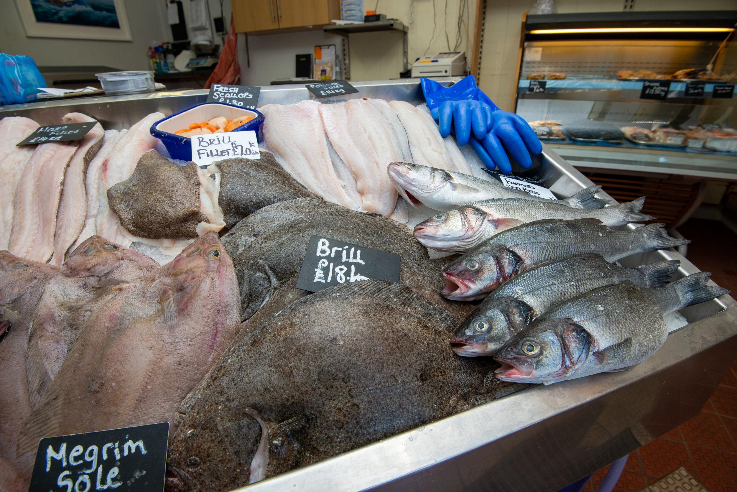 Fishmongers Company Cornwall Visit July 19 059.jpg