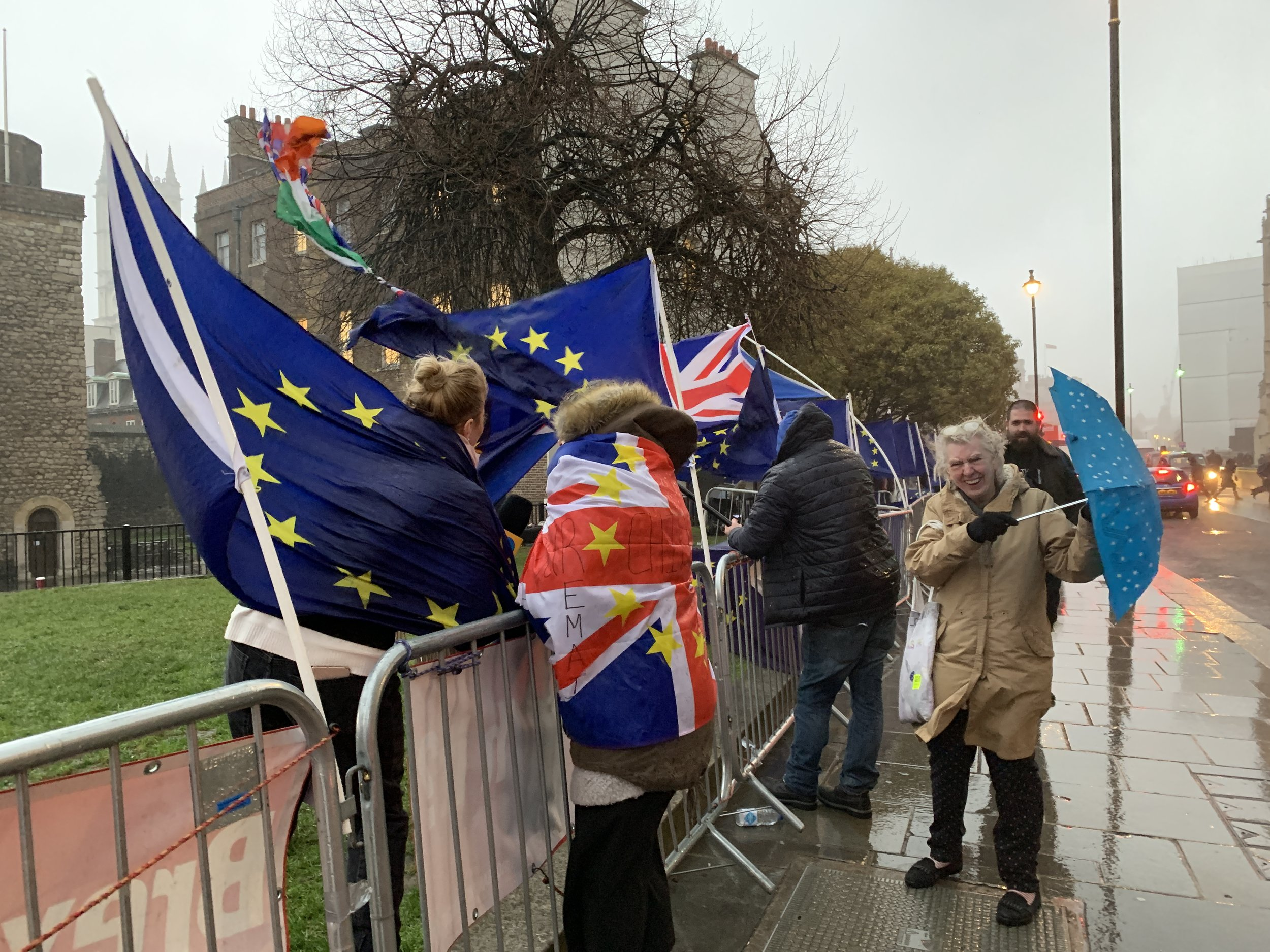 Brexit protests jpg