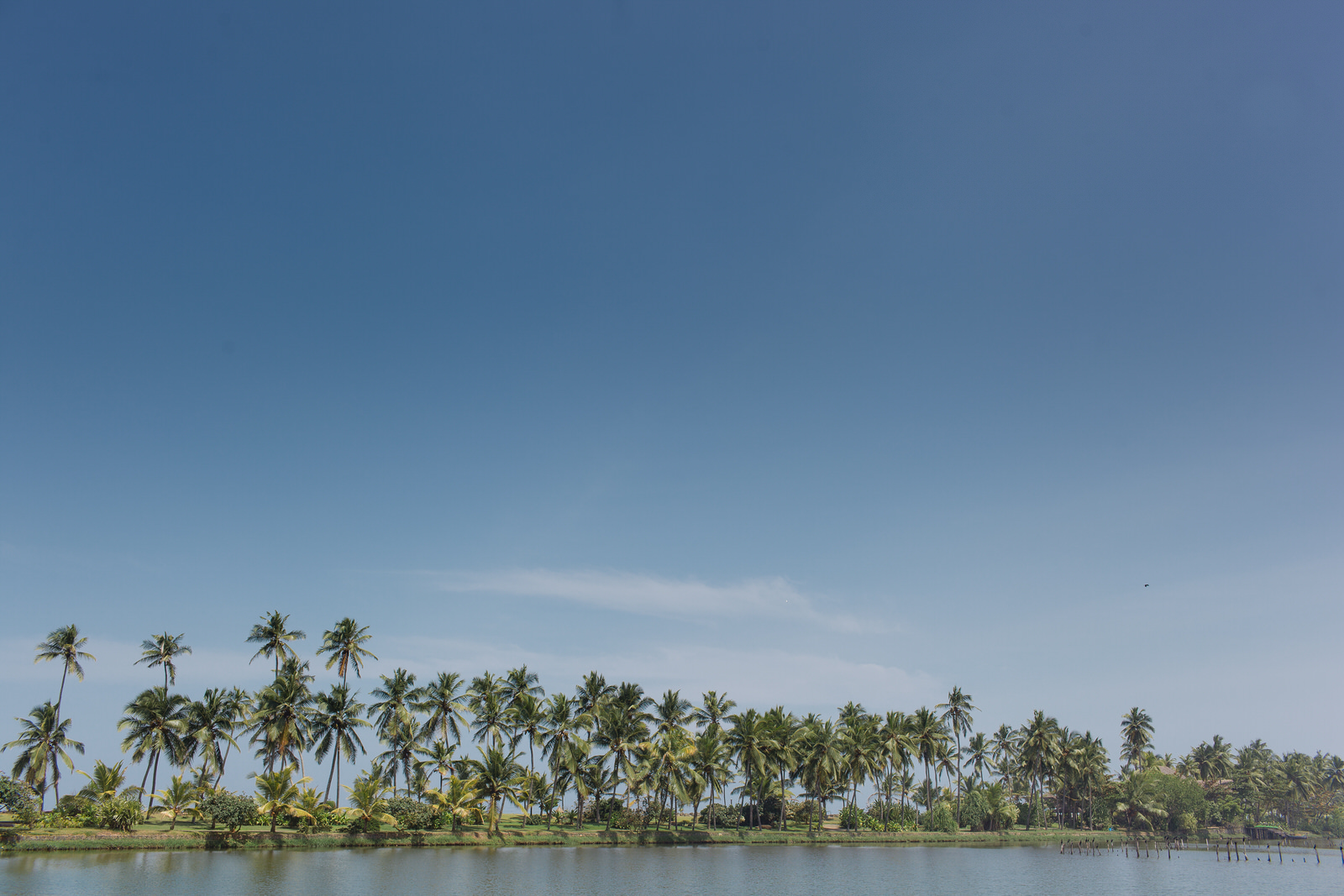 destination-wedding-photographer-Kerala-india-3.JPG