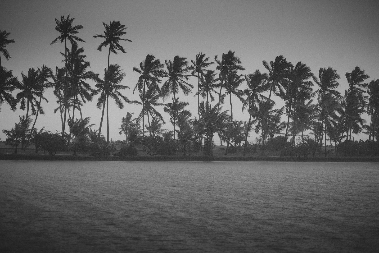 destination-wedding-photographer-Kerala-india-45.JPG
