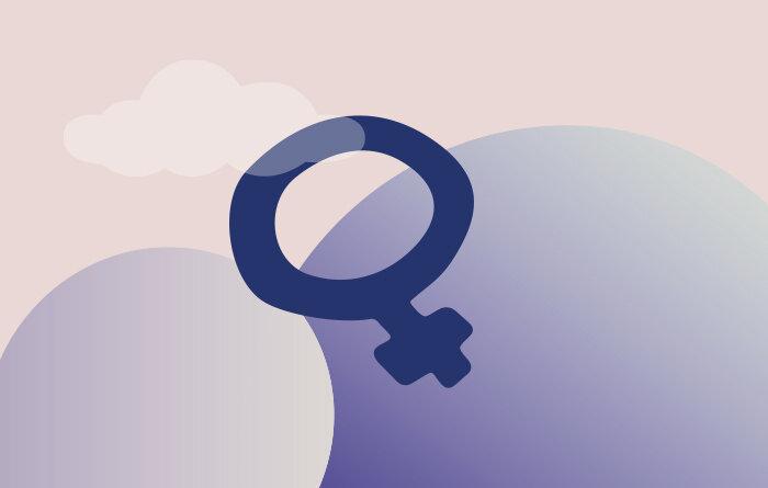 Feminism Tjejjouren Väst