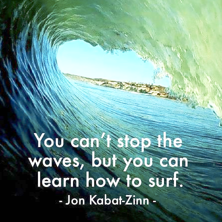 you can't stop the wave but you can learn to surf