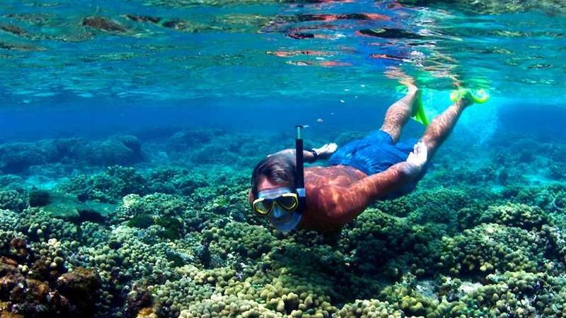 Snorkelling-sri-lanka-kalpitiya.jpg