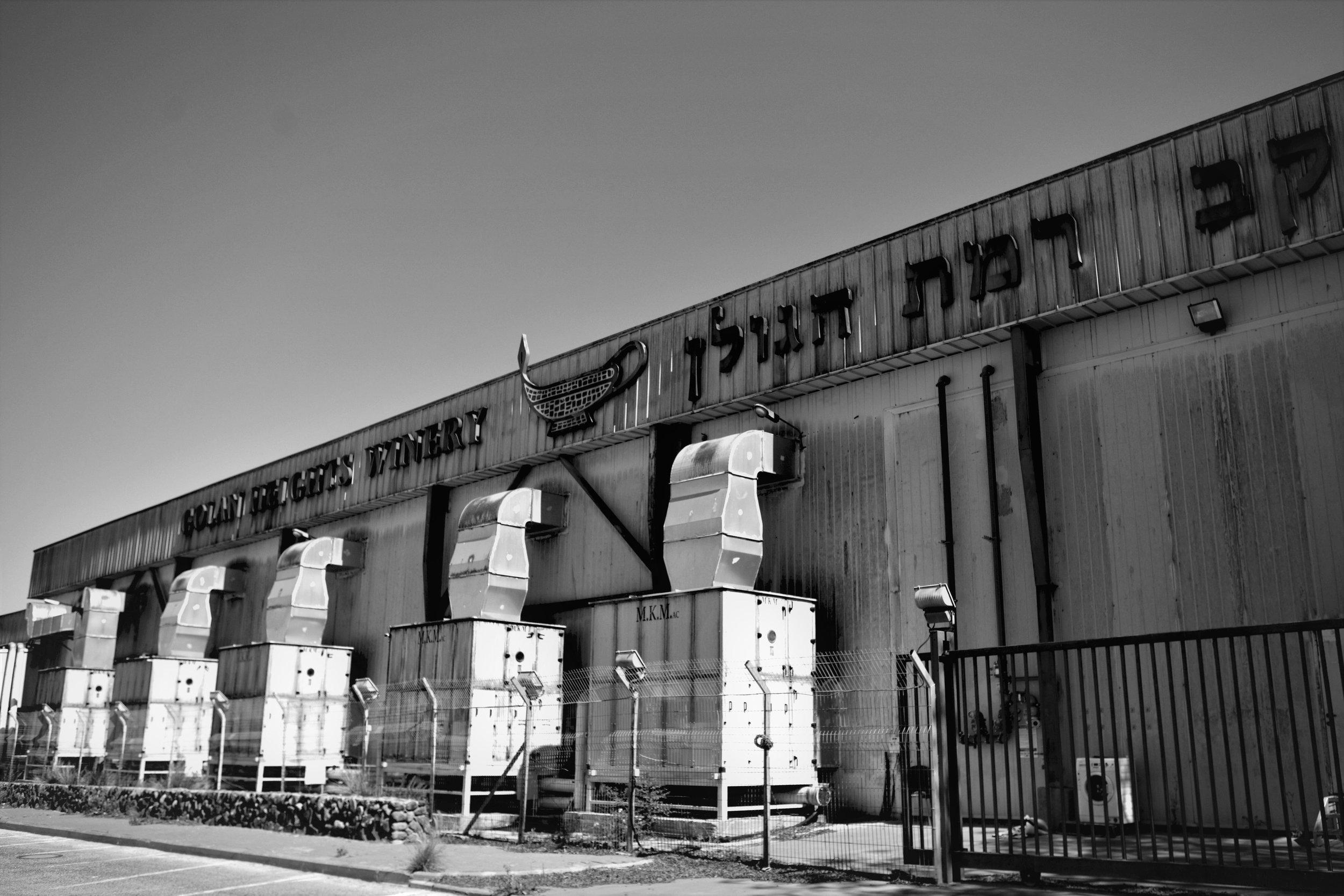 Die als Keller dienenden Produktionshallen der Golan Heights Winery.