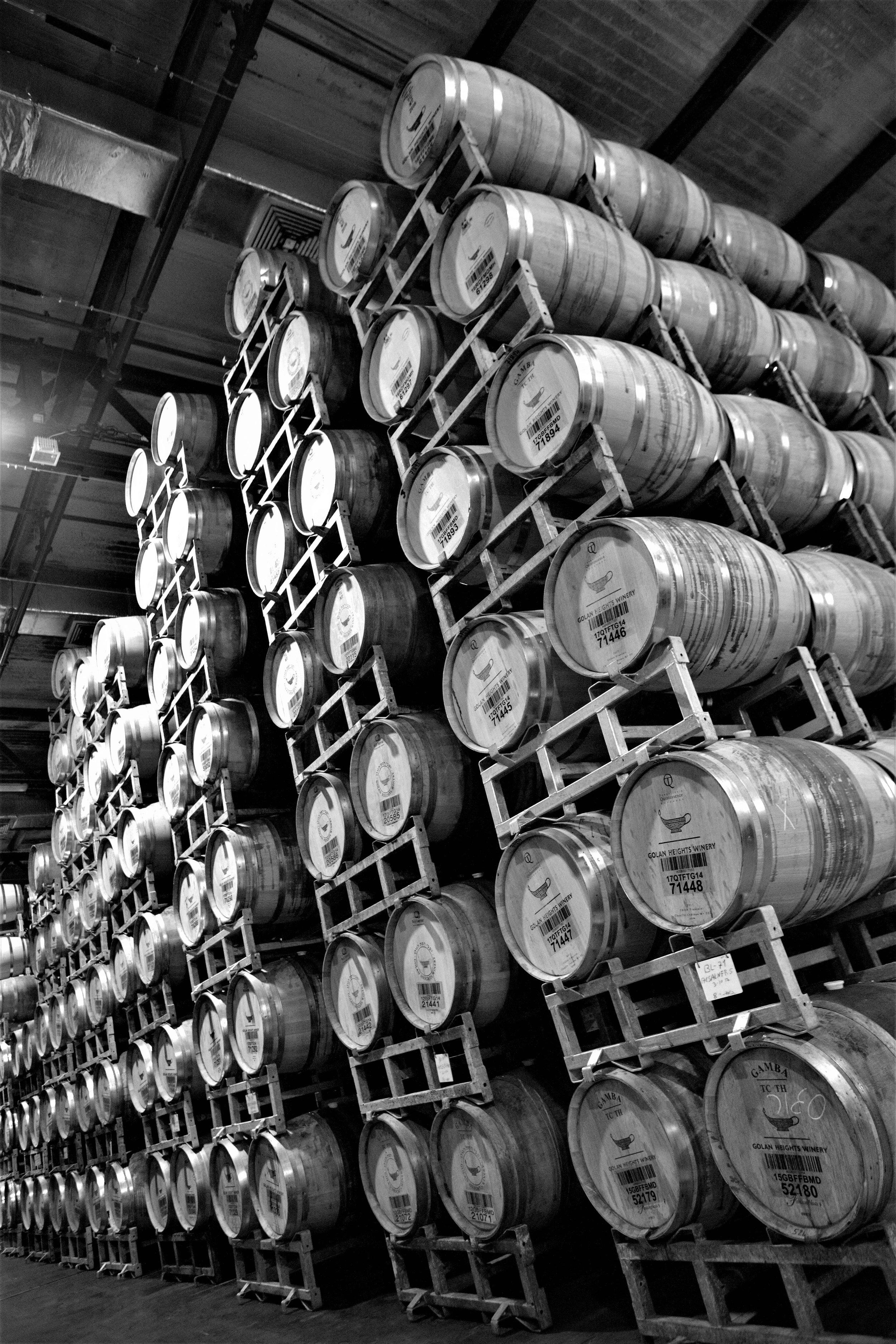 Kein Boutique-Weingut: Rechnet man die Golanhöhen zum Land Israel, ist die Golan Heights Winery der drittgrösste Weinproduzent des Landes.