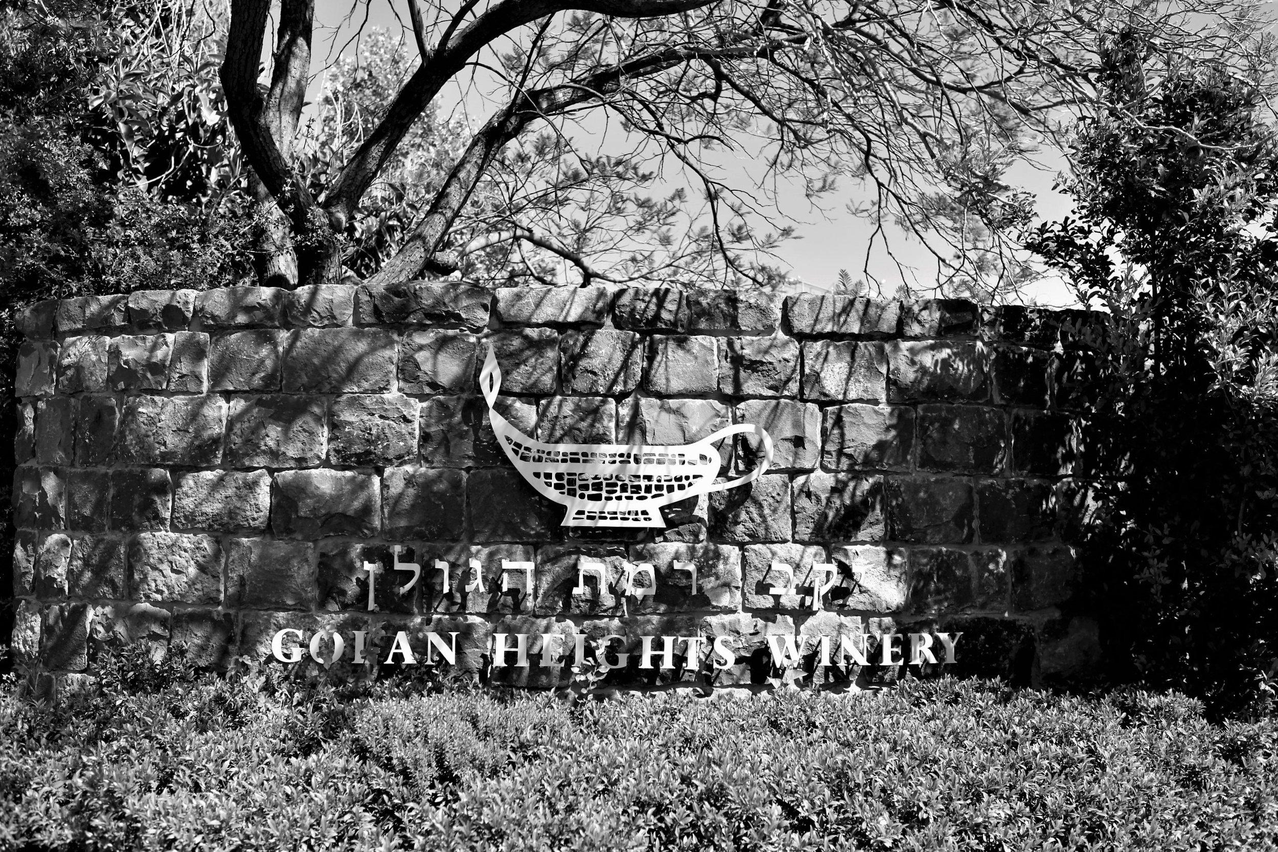 Golan Heights Winery, Qatsrin, Golanhöhen.