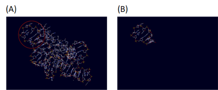 Figure 4  Tetra loop (PDB:1F7Y) before (A) and after (B) extraction from larger structure. The red circle shows tetra loop within the larger structure.