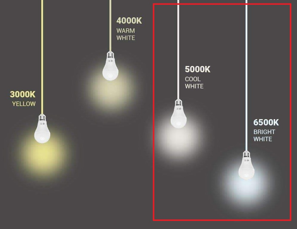 Light temperature range with the ideal range for photo/video work highlighted